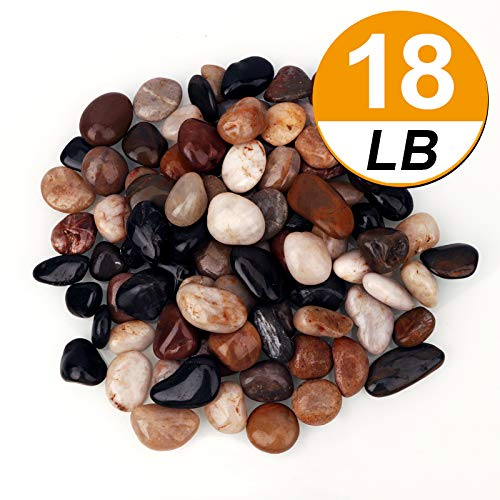 [18 Pounds] Pebbles Aquarium Gravel River Rock, Natural Polished Decorative Gravel,Garden Outdoor Ornamental River Pebbles Rocks, Mixed Color Stones,Polished Gravel for Landscaping Vase Fillers (18)