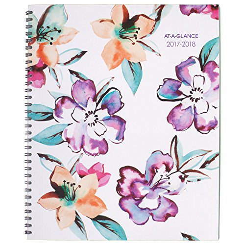 "AT-A-GLANCE Academic Weekly / Monthly Planner, July 2017 - June 2018, 8-1/2"" x 11"", June Design (1012-905A) Photo #1"