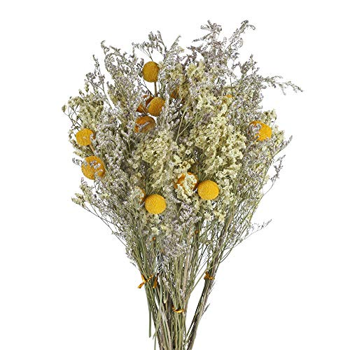 XHXSTORE 4Pcs Dried Flowers Bouquet Craspedia Billy Balls Dried Lavender Flowers Billy Buttons Craspedia Bundles Artificial Handmade Flowers Fake Flowers for DIY Home Vase Wedding Party Props Decor
