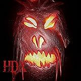 HDX 3
