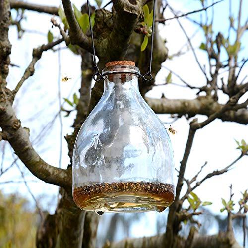 CKB LTD® Wasp Catcher Trap Glass Bottle Piège à Guêpe en Verre Bouteille - Trappeur Attrayant Traditionnel Attrape Le piège à Insectes Lutte antiparasitaire