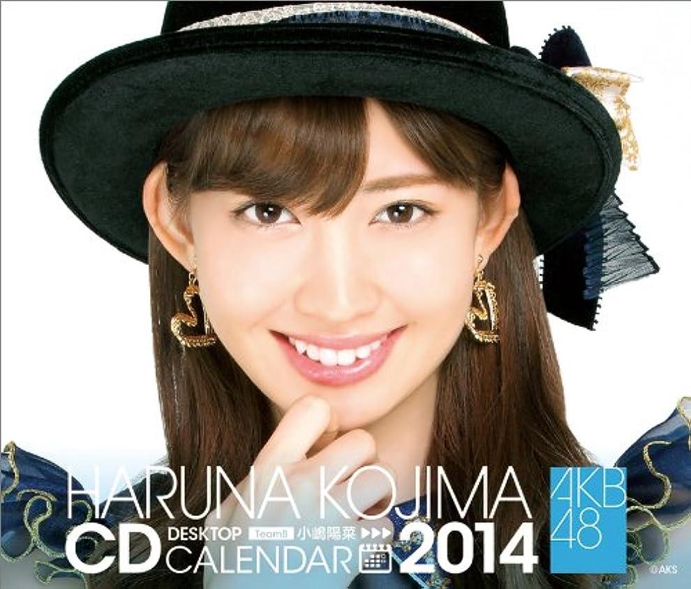属する委員長軸(卓上)AKB48 小嶋陽菜 カレンダー 2014年