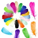 Gobesty DIY Colored Feathers, 400 Pieces Coloured Feathers, Arts and Dream Catcher Feathers, for DIY Craft Wedding Home Party Decorations