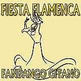 Fiesta Flamenca, Fandango Gitano