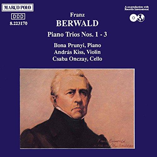 Piano Trio No. 3 in D Minor: III. Finale. Allegro molto - Un poco meno allegro