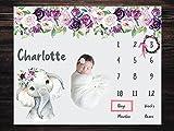 Personalized Baby Milestone Blanket Girl Elephant with Markers, Customized Milestone Blanket, Monthly Milestone Blanket, Baby Photo Prop Blanket, Custom Milestone Blanket, Baby Age Chart, Baby Gift