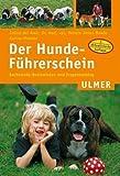 Der Hunde-Führerschein von Celina DelAmo (2006) Taschenbuch