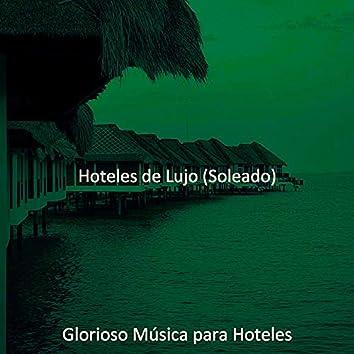 Hoteles de Lujo (Soleado)