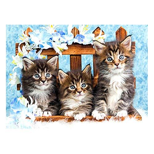 Dracol 5D DIY Kit de pintura de diamantes, pintura de diamantes con diamantes de imitación para decoración de pared de animales, decoración del hogar - Tres gatitos en silla de madera - 30 x 40 cm