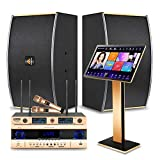 Karaoke System, Peierstion One-piece Singing Machine 22 inch 4K Touch Screen with Power Amplifier, Speaker and Wireless Microphones Professional Home Entertainment Songs Movie WIFI Cloud Download
