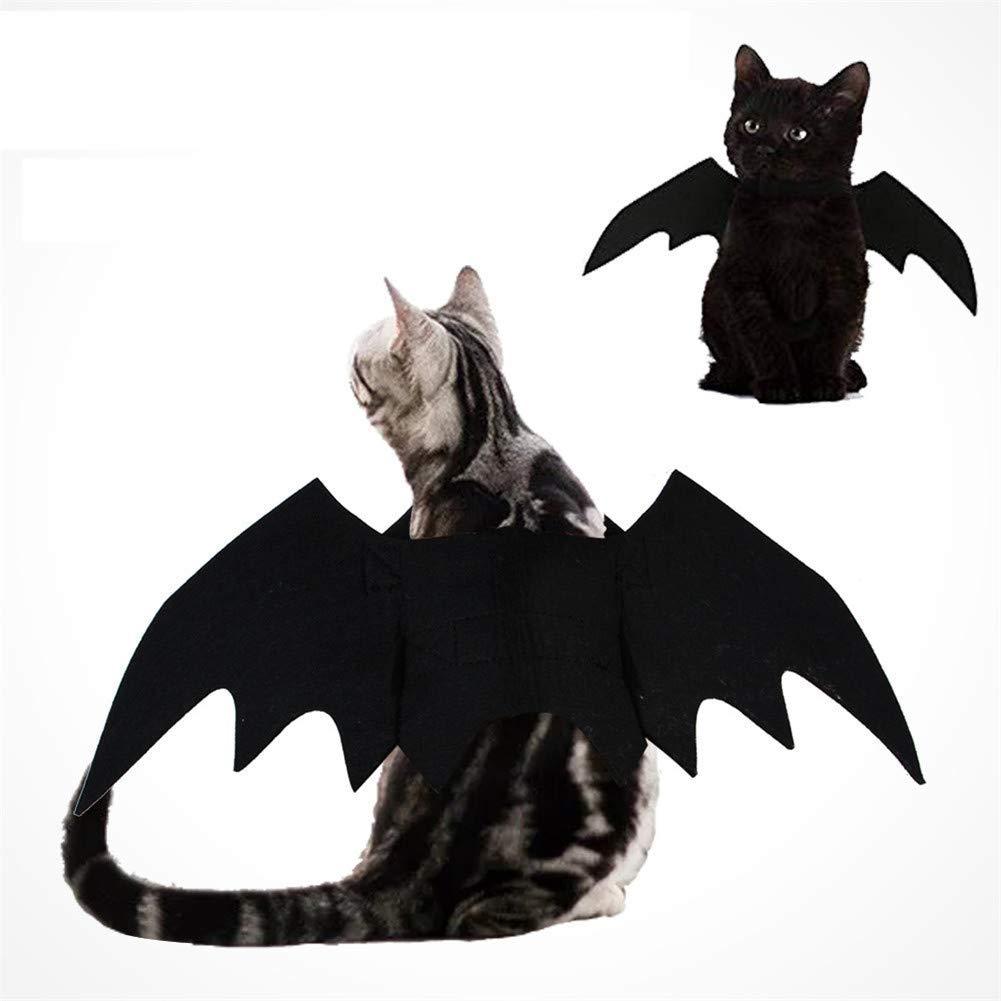 HAMISS Disfraz de murciélago para Mascotas con alas de Vampiro ...