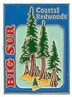 """USA STATES, CALIFORNIA BIG SUR Coastal REDWOODS - Original Artwork, Expertly Designed PIN - 1"""""""