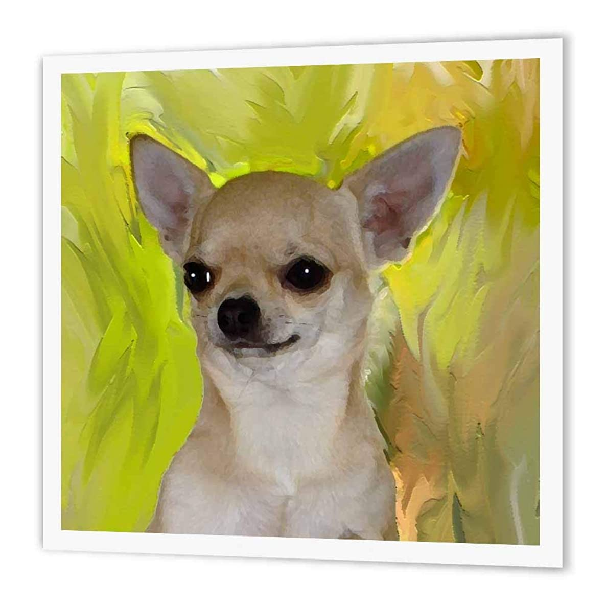 3dRose ht_4465_1 Chihuahua Portrait Iron on Heat Transfer Paper for White Material, 8 by 8