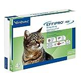Virbac 104069012 EFFIPRO' CAT 4PIP - Antiparassitario per Gatti, Confezione da 4 Pipette
