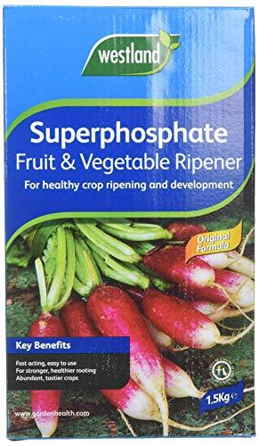 Westland Superphosphate Fertiliser Fruit and Vegetable Ripener, 1.5 kg