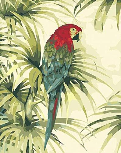 Hanzeze Pintar por Numeros Loro Principiantes Pintura en Lona Kits de Pinceles para el Arte de la Pared Imagen Decoración del hogar Ilustraciones 40x50cm Sin Marco