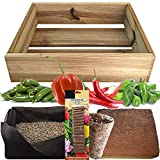 No Plan B for Earth Kit de Cultivo con Maceta de Pino Tratada. Semillas de Pimiento Habanero, Pimiento Picante Cayena, Picante Jalapeño, Pimiento Padrón