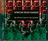 My Life in a Hole in the Ground - African Head Charge