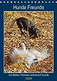 Hunde Freunde (Tischkalender 2020 DIN A5 hoch): Ein Golden Retriever und seine Hundefreunde (Planer, 14 Seiten ) (CALVENDO Tiere)