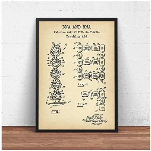 Crazystore Bild auf leinwand Human DNA und RNA Lehrmittel Patent Poster Genetik Biologie Medizinstudent Geschenk Wissenschaft Malerei Dekor 50x70cm ohne Rahmen