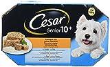 Multipack de 4 tarrinas de 150g para perros senior de +10 años | [Pack de 6]