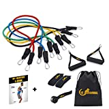 Fit Mammal Resistance Band Set-Resistance Bands for Workout for Men & Women- Warranty for Life- Heavy Resistance Tube Gym Band & Stretch Band for Exercise- 50+ Exercise Bands E-Book Included