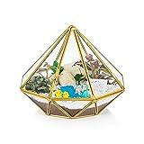 Glasseam Vidrio Terrario Geométrico Contenedor Triángulo Mesa Moderna Plantador Decoración De Alféizar Estantes Flotantes Caja De Exhibición De Bricolaje Regalo para Planta De Aire Suculenta, Oro