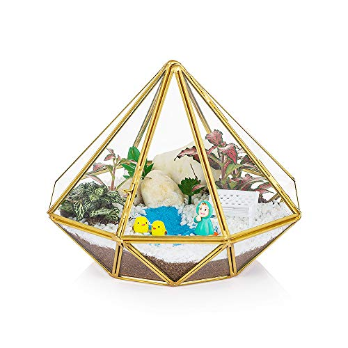 Glass Geometric Terrarium Container Triangle Modern Table Planter Windowsill Decor Floating Shelves DIY Display Box Centerpiece Xmas Gift for Succulent Air Plant Miniature Fairy Garden, Gold