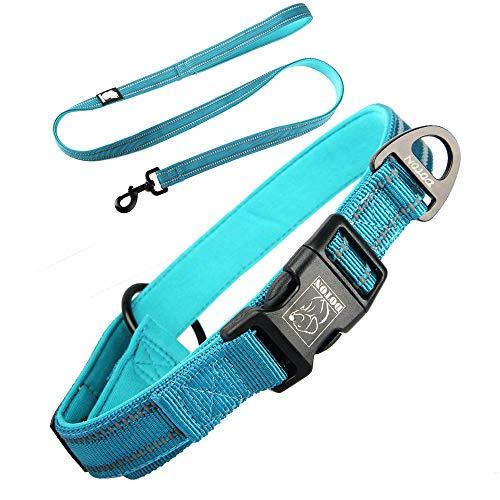 Hundeleine mit Leine,verstellbare reflektierende Leine,für kleine und mittelgroße Hunde Walking/Wandern (L, Blau)