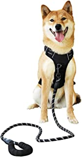 Raining Pet No Pull Dog Harness Dogs Leash Set, Reflective Dog Harness for Large, Medium,Extra Large Dog Breeds