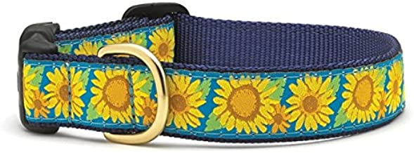 Best up country collars and leashes Reviews