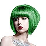 Splat Complete Kit One Step Color Process - Neon Green...