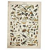 Onsinic Wand-deko Vintage Poster Bienen