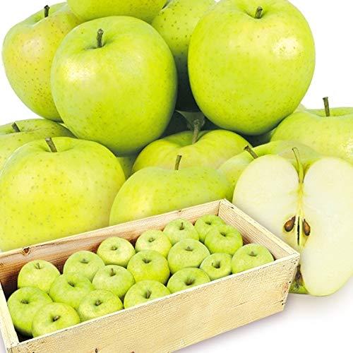 国華園 青森産 ご家庭用 王林 約20�s 木箱 1組 りんご