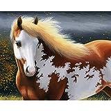 Xhzzdhbc Dipingere con I Numeri Pittura Digitale Moderna Acrilica di Arte della Pittura di Arte della Parete del Corredo della Pittura di Digital Animale del Cavallo Senza Telaio 40X50Cm