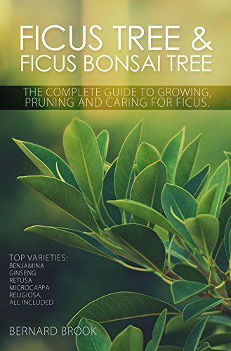 Ficus Tree and Ficus Bonsai Tree. The Complete Guide to Growing, Pruning and Caring for Ficus. Top Varieties: Benjamina, Ginseng, Retusa, Microcarpa, Religiosa all included. (English Edition)