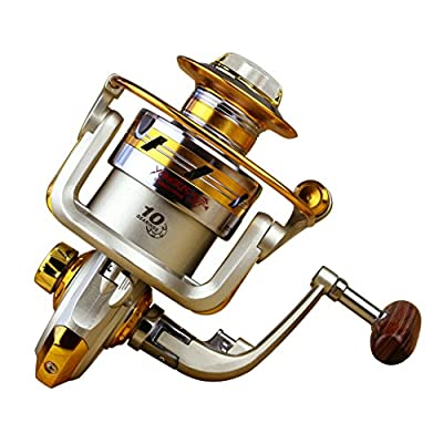 Continu Professional New 10BB Ball Bearing Saltwater/ Freshwater Sea Fishing Spinning Reel 5.5:1 Hot Sale by Continu