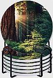 CIKYOWAY Posavasos para Bebidas,Morning Sunlight in Wilderness Yosemite Sierra Nevada Nature Art Juego de 6 Posavasos absorbentes con Soporte de Metal/Fondo de Corcho,para Casa Restaurante Y Bar