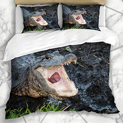 779 LIICOCO Duvet Cover Setss Mouth Pink Aliigator Alligator Open Wide Everglades Reptile Gator Florida American Eyes Design Microfiber Bedding with 2 Pillow Shams