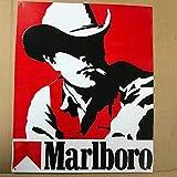 SIGNCHAT Metallschild mit Aufschrift 'Man Cowboy Marlboro Come to Flavor', 20,3 x 30,5 cm