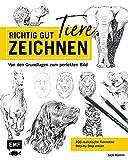Richtig gut zeichnen – Tiere: Von den Grundlagen zum perfekten Bild – 200 realistische Tiermotive Step by Step erklärt