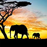 Wowdecor 5D Diamond Painting Kits, Animals Elephant Sunset Landscape, Full Drill DIY Diamond Art Cross Stitch Paint by Numbers (Elephant)