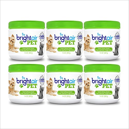 Bright Air Solid Pet Odor Eliminator, Cool Citrus Scent, 14 Oz Each, 6 Pack