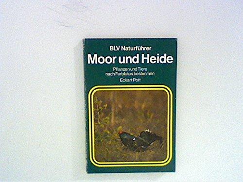 Moor und Heide. Pflanzen und Tiere nach Farbphotos bestimmen