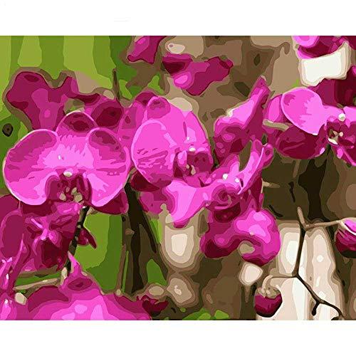 YSNMM De orchidee van de vlinderschildering om zelf te maken met de cijfers canvas Painitng Home Wall Art afbeelding Coloring by Nummers Home Decor