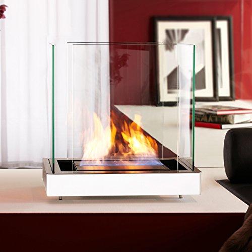 Top Flame 1,7 L weiss gebürsteter Edelstahl Ethanolkamin von Radius Design - 551 c