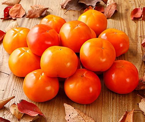 全額返金保証 低農薬 和歌山 九度山産 甘熟 富有柿 訳あり 約3.5kg 10〜13玉 樹上 完熟 SSS 12t