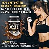Zoom IMG-1 whey protein isolate 100 pura
