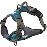 Embark Dog Running Harness