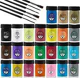 Acrylfarben Set mit Acrylfarben auf Wasserbasis für Steine, Holz, Papier und Leinwand, Acryl Farben Set für Kinder, Erwachsene 24 x 25 ml Pigment +6 Pinsel
